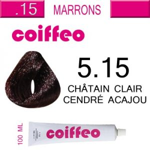 coloration-coiffeo-n10-100ml (10)